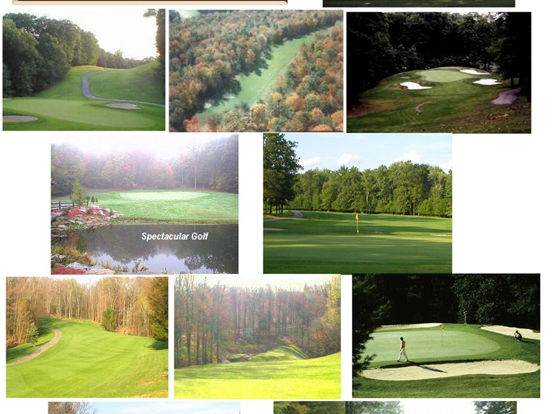 Treasure Lake Golf Course Collage